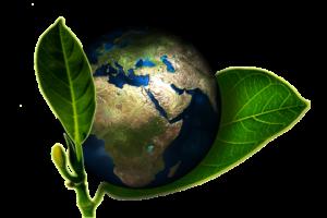 Mes engagements pour la planète